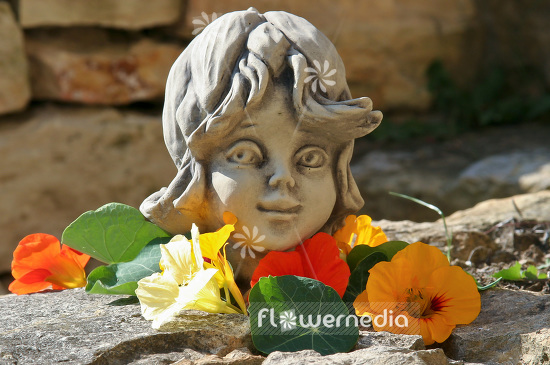 Garden sculpture for decoration (102120)