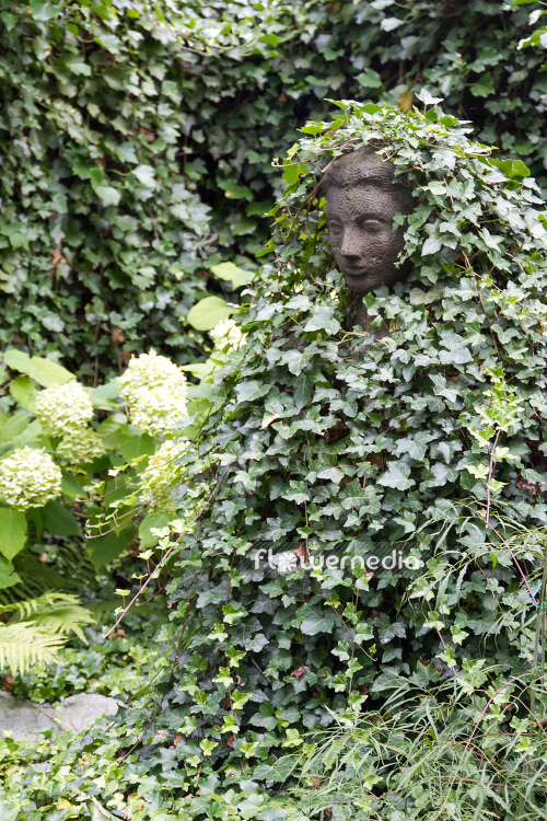 Sculpture with ivy (110584)