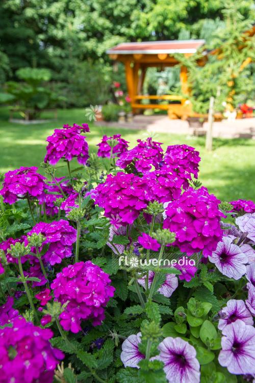 Flowermedia